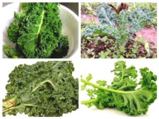 10 Great Health Benefits Of Kale (Kale)