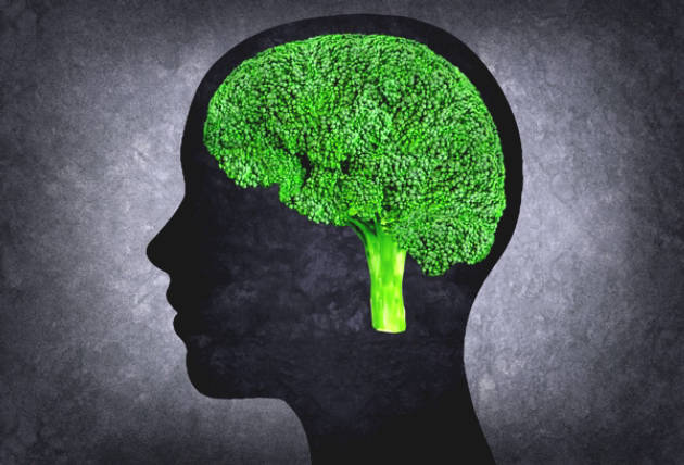 11 Best Foods To Enhance The Brain And Memory