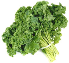 11 Wild Hypothesis Common on Vegan Diets