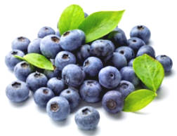Basic Things To Know About Antioxidants