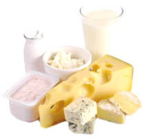 Calcium And Osteoporosis - Milk Products Are Really Good For ...