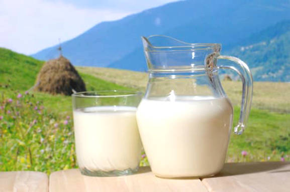 Ingredients Nutrition and Health Benefits of Milk