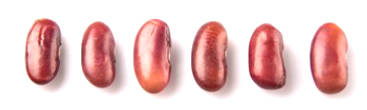 Kidney Bean: The Value of Nutrition and Health Benefits