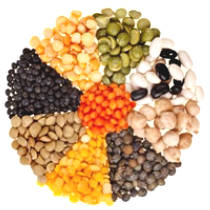 Legumes Good Or Bad?