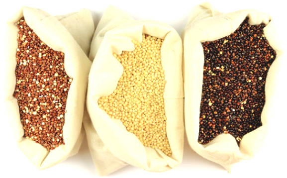 Nutritional composition and health benefits of Quinoa seeds