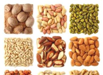 Top 20 Rich Protein Foods You Should Eat