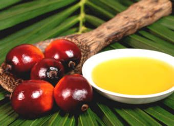 Is Palm Oil Good For You?