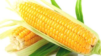 "Two Ways Corn Can ""Kill"" You"