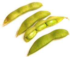 The Truth About Soybeans - Benefit Disadvantages